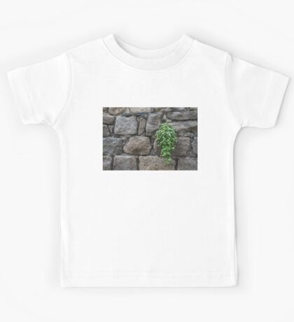 Life on Bare Rock - Little Pink Flowers on the Granite Wall Kids Tee