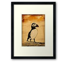 Puffin Print Framed Print