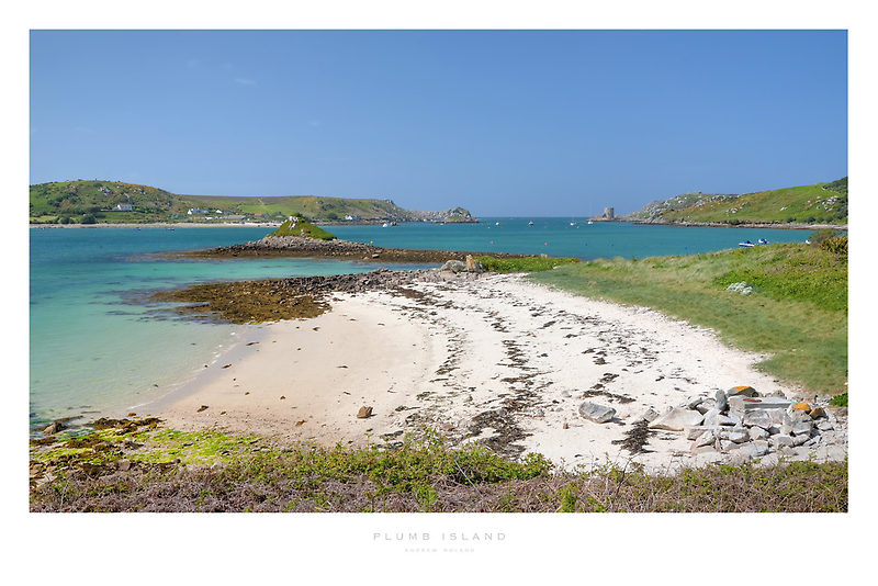 Plumb Island by Andrew Roland
