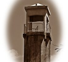 Tower Top. by Picturesque15