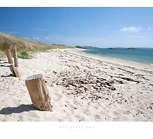 Appletree Bay by Andrew Roland