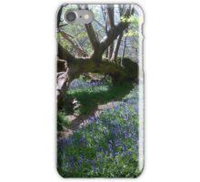 Bluebells among a fallen tree. iPhone Case/Skin