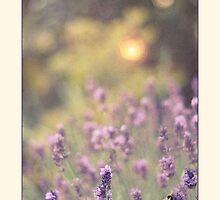 Evening Lavender by AlysonArtShop