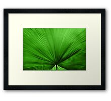 The Big Green Leaf Framed Print