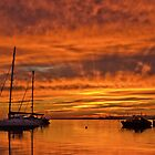 Sunrise at Rippleside - Geelong Victoria by Graeme Buckland