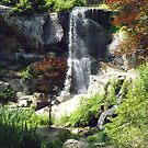 Waterfall - Maymont Japanese Gardens by AJ Belongia