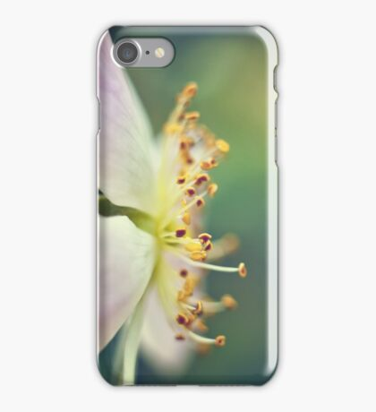 Clematis Close  iPhone Case/Skin