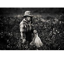 Herb Picker, Australia Photographic Print