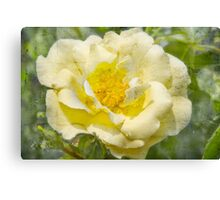 Yellow flower with vintage texture Canvas Print