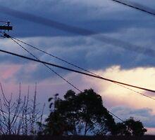 sunset in suburbia by peterhau