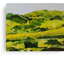 Vineyard in the Hills Canvas Print
