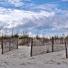 Beach Scene At Pawley Island by Kathy Baccari