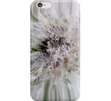 Dandelion Water Drops 02 iphone, ipod case iPhone Case/Skin