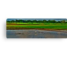Countryside- Farming fild Canvas Print