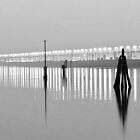 Venice Lagoon B&W by Alvise Busetto