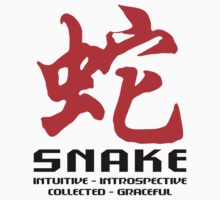 Year of The Snake Characteristics T-Shirt by ChineseZodiac