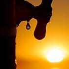 Drop of Sunshine by Leon Heyns