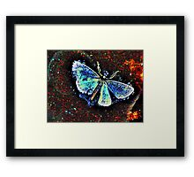 The Journey of a Moth Framed Print