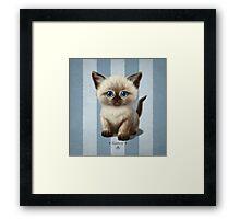 Cat-a-Clysm: Siamese kitten Framed Print