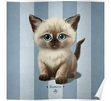 Cat-a-Clysm: Siamese kitten Poster