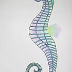 Rainbow Seahorse by Shahna