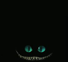 cheshire cat 2 by andrea volpi