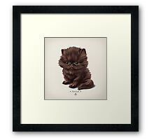 Cataclysm - Persian Kitten - Classic Pattern Framed Print