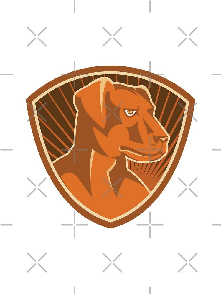 Sheepdog Border Collie Shield Retro by retrovectors