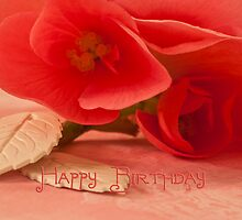Happy Birthday Card With Begonia Blossoms by Sandra Foster
