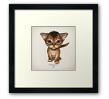 Cataclysm - Abyssinian Kitten - Classic Framed Print