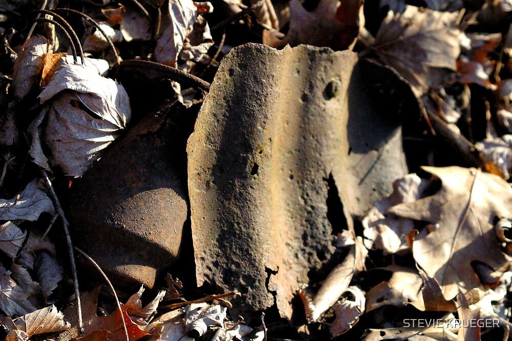 Rock River Remnants by STEVIE KRUEGER
