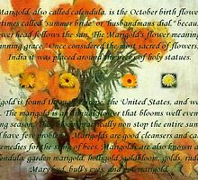 October's Child Birthday Greeting with Marigolds by taiche