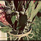 Wildflowers by randomness