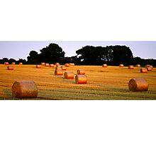 A Harvest Scene Photographic Print