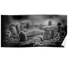 Stonehenge ~ Macro Poster