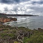 Point Addis Lookout by Shari Mattox