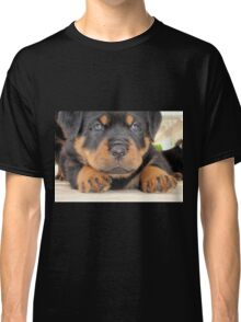 Cute Rottweiler Puppy With Blue Eyes Classic T-Shirt