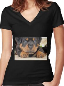 Cute Rottweiler Puppy With Blue Eyes Women's Fitted V-Neck T-Shirt