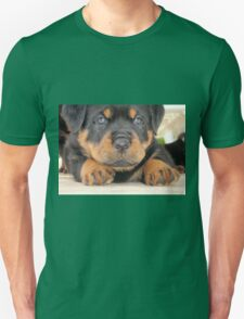 Cute Rottweiler Puppy With Blue Eyes T-Shirt