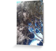 the magical tree Greeting Card