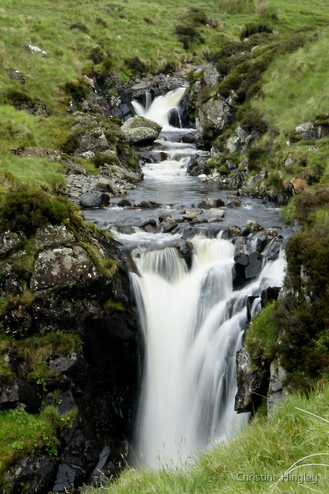 Feel the force by Christine Hingley