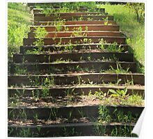 Stairs on Hiking trail Poster