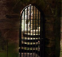 Iron Gate by Colin Bentham