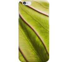 iPhone - Leaf iPhone Case/Skin