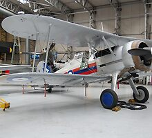Gloster Gladiator, IWM Duxford by Ross Sharp