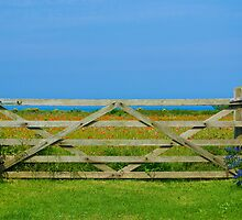 Gate_Crantock by TabithaB-W