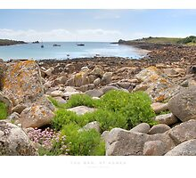 The Bar, St Agnes by Andrew Roland