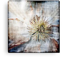 Flower and Texture #2 Canvas Print