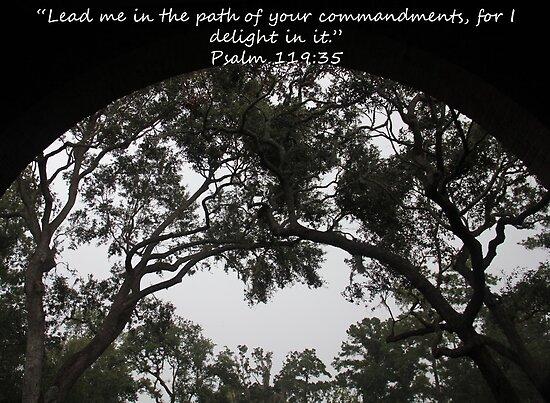 """""""Psalm 119:35""""  by Carter L. Shepard by echoesofheaven"""
