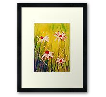 #2  series of daisies Framed Print